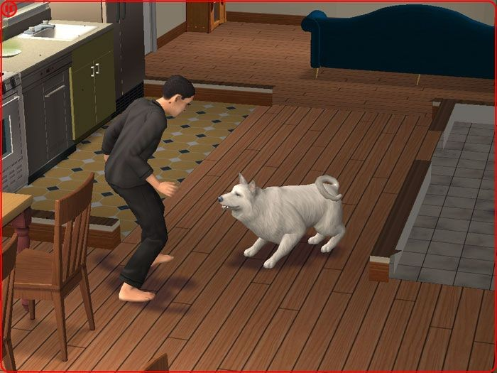 Cats And Dogs Sims  When