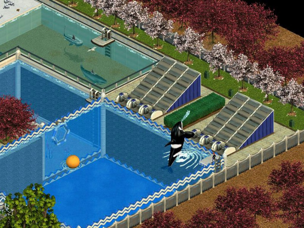 Zoo tycoon complete collection fr download | ЕНТ, ПГК, гранты